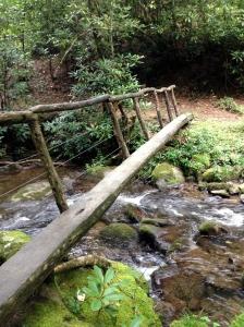 Crossing creeks like a boss!