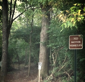No Motor Vehicles....or creepers